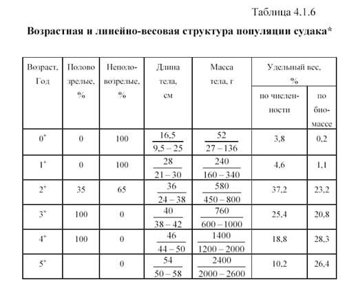 таблица масс судака