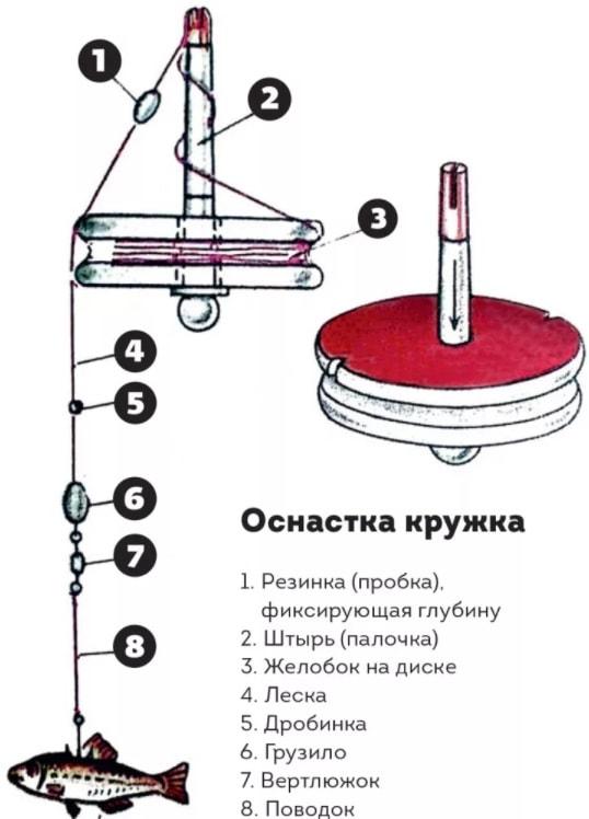 Техника ловли щуки на донку и выбор живца