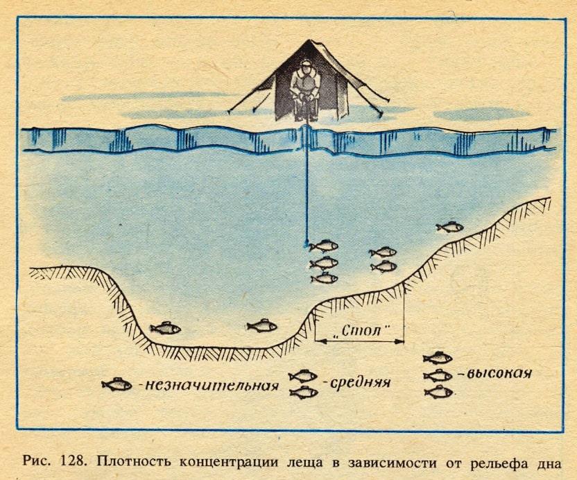 Ловля леща зимой на глубине